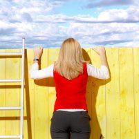 Über den Zaun schauen